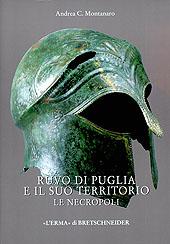 Ruvo di Puglia e il suo territorio : le necropoli : i corredi funerari tra la documentazione del XIX secolo e gli scavi moderni