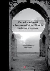 Castelli medievali a Petra e nel Vicino Oriente tra rilievo e archeologia : atti del convegno internazionale di studi, Firenze, 21-25 ottobre 2004