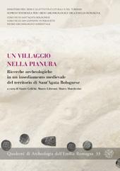 Un villaggio nella pianura : ricerche archeologiche in un insediamento medievale del territorio di Sant'Agata Bolognese